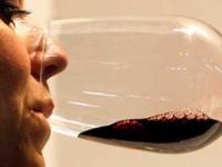 Una copa de vino tinto al día mejora la flora intestinal